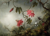 Martin Johnson Heade - Passion Flowers and Hummingbirds, about 1870-83