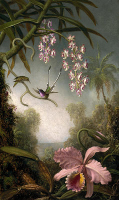 Martin Johnson Heade - Orchids and Spray Orchids with Hummingbirds, about 1875-90